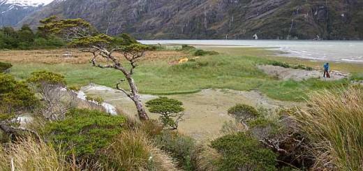 Ein Überblick auf unser Basislager. Eigentlich ist es wunderschön gelegen und nur ein paar Meter von bestem Wasser entfernt. Doch leider gibt es hier kein trockenes Fleckchen.