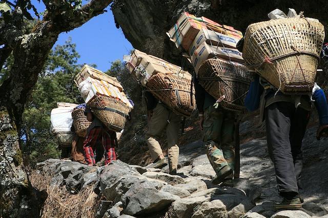 """Die Lastenträger in Nepal leisten schier übermenschliches. In einer Untersuchung ist festgestellt worden, daß die 20 bis 40jährigen im Durchschnitt 153 % ihres Körpergewichts tragen. Diese Zahl stammt aus Geo Spezial """"Himalaya"""". Das sind rund 90 Kilogramm bei einem 60 Kilo schweren Mann. Sie tragen diese titanische Last nur mit einem Stirngurt und oft in Badelatschen."""